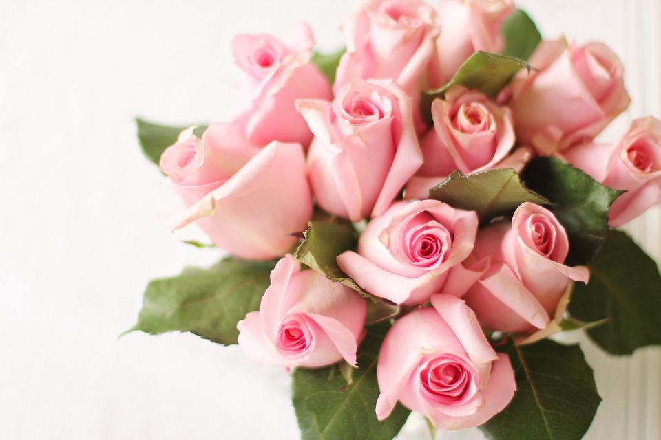 バラの花言葉 本数や色によって意味が違う薔薇(バラ)の花言葉