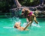 dog, lake