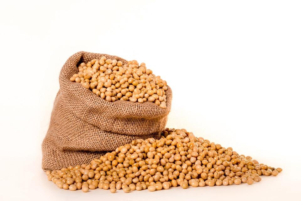 大豆, 植物, 種子, バッグ, バーラップ, 粒, 油, 豆