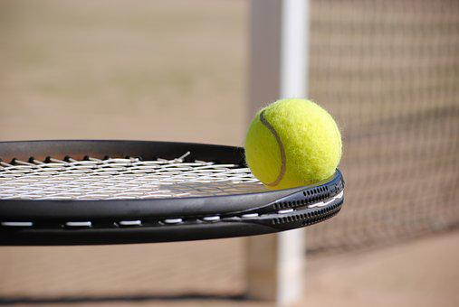 Tennis, Ball, Tennis Court, Tennis Ball