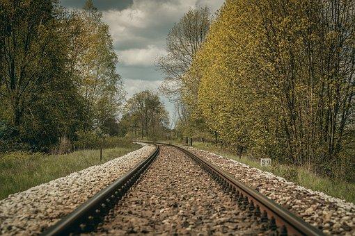 Tracks, Tree, Traction, Transport