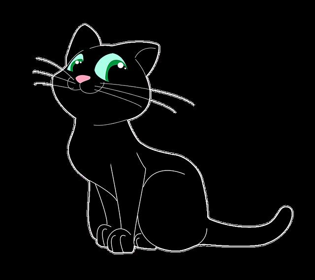 Кошка в очках картинки