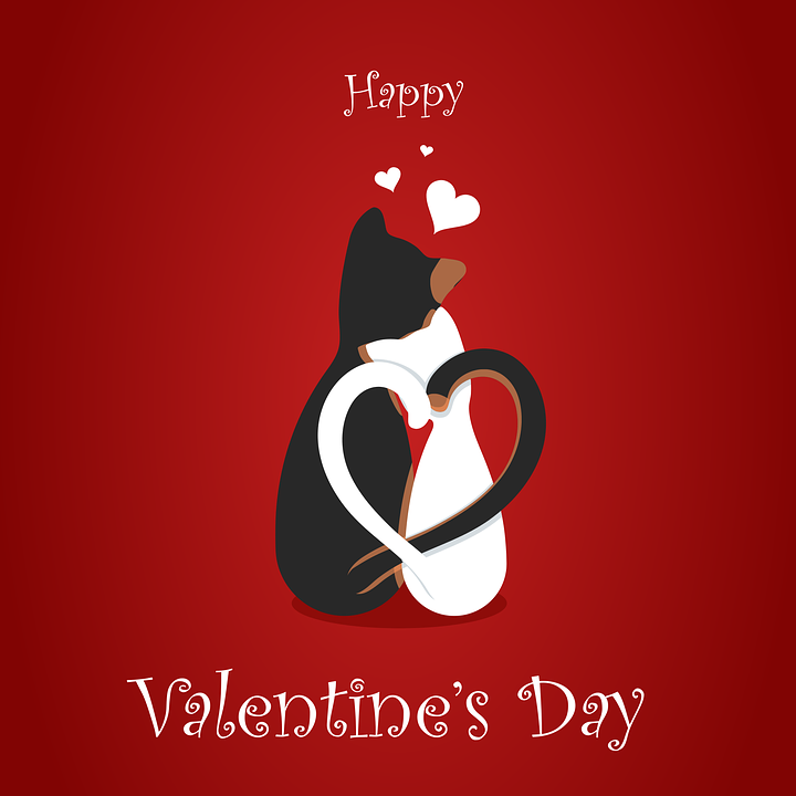 Free vector graphic: Valentine'S Day, February, 14 - Free Image on ...