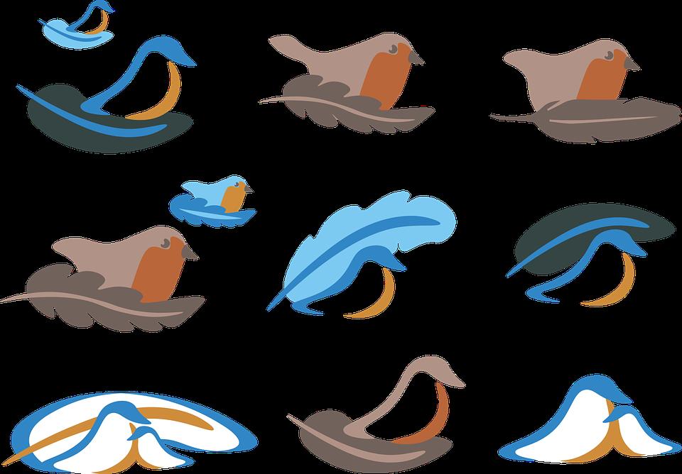 Unduh 108+  Gambar Burung Sederhana HD Paling Keren Free