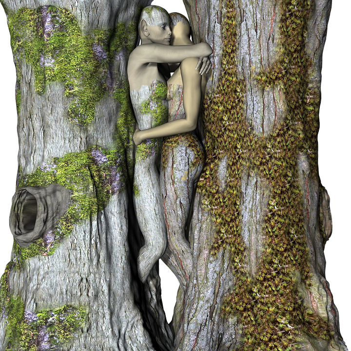 Tree Wood Woman 183 Free Image On Pixabay