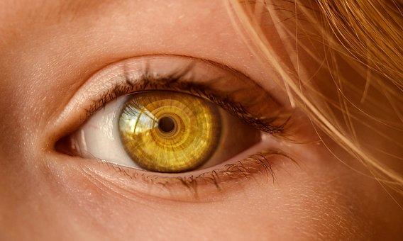Eye, Look, Eye Open, To Watch, Observe