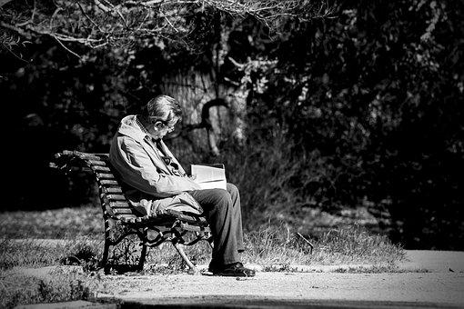 Solo, Reader, Old, Park