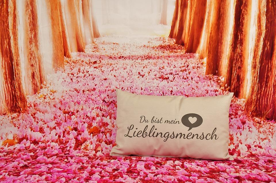 Valentinstag Liebe Lieblingsmensch Kostenloses Bild Auf Pixabay