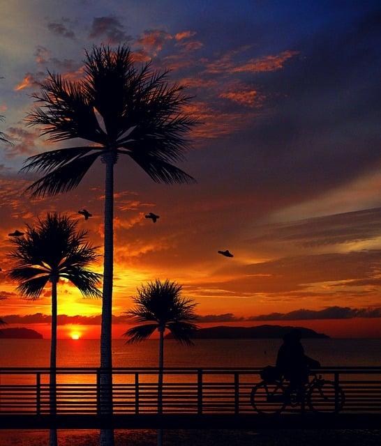 Vw California Camper >> Zonsondergang Palmbomen Strand · Gratis afbeelding op Pixabay