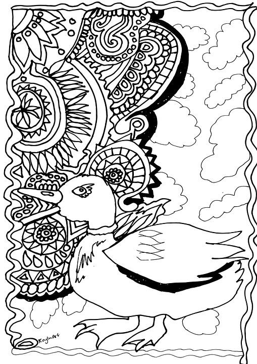 ördek Boyama Sayfası Tasarım Pixabayde ücretsiz Resim