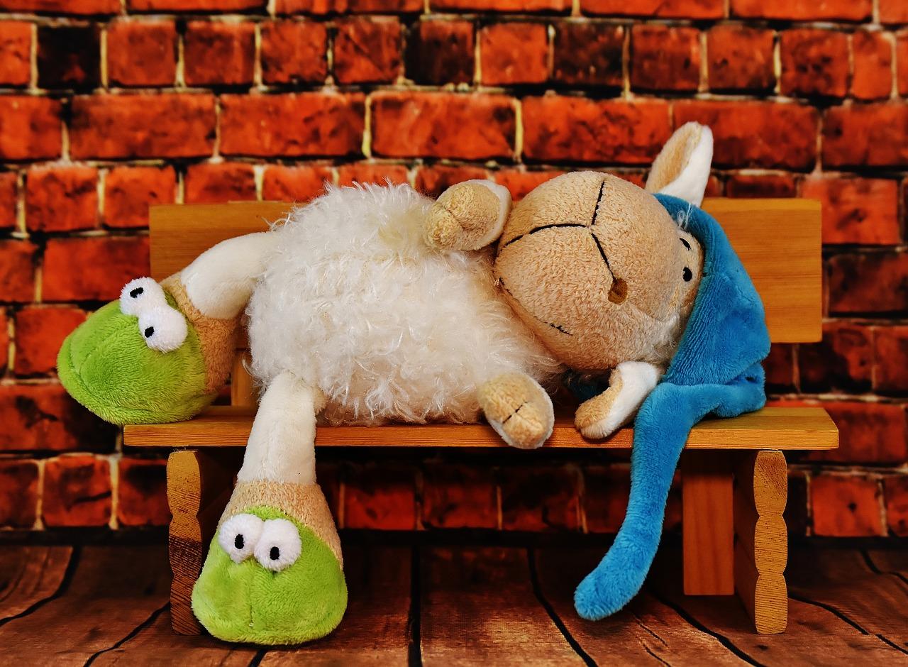 Смешные овечки картинки, день рождения