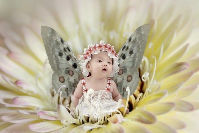 Fairy Baby Fantasy 183 Free Image On Pixabay