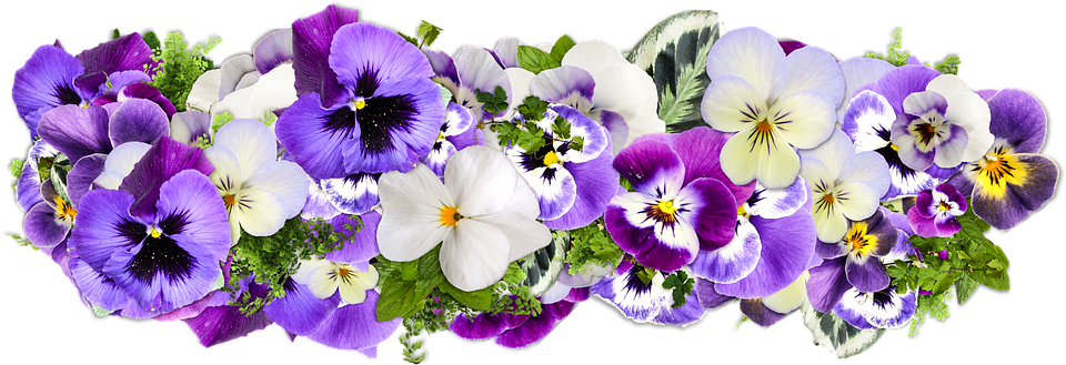 Flowers Decoration Line Of Free Image On Pixabay
