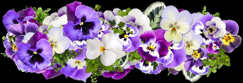 Picsart Png Hd Flowers