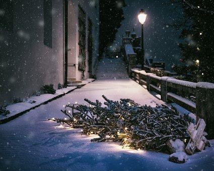 Christmas, Snow, Night, Cold, Winter