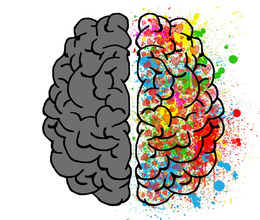love and the brain psychology