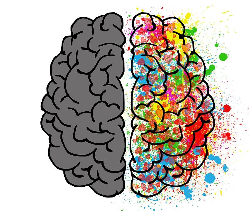 Image result for psicología