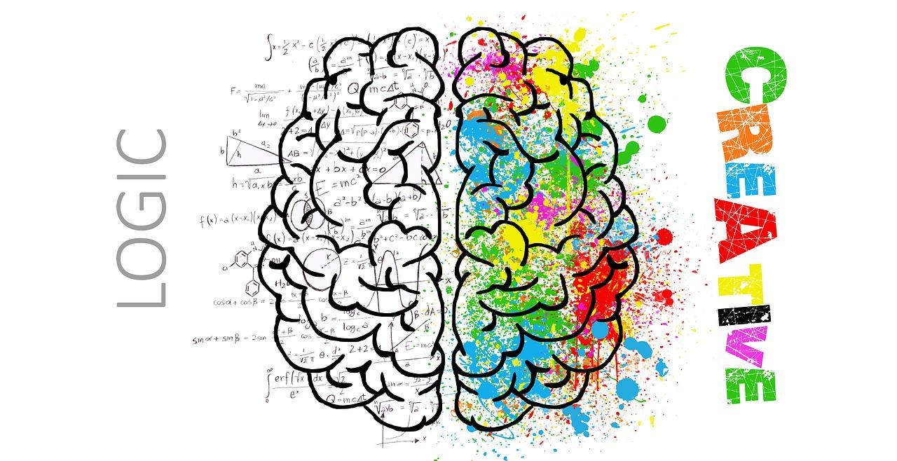 https://cdn.pixabay.com/photo/2017/02/13/08/54/brain-2062055_1280.jpg