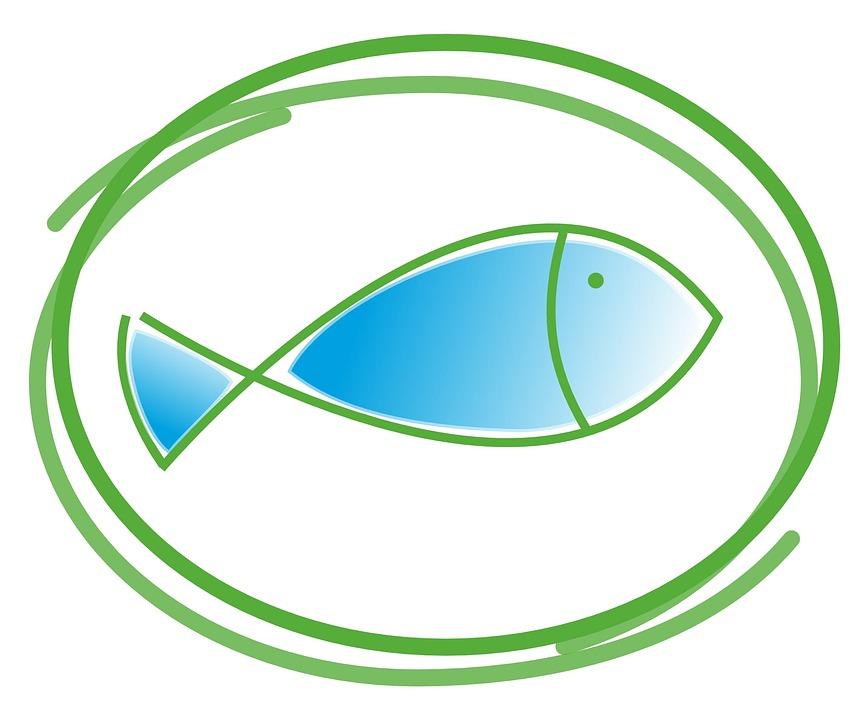 Fisch Taufe Kommunion Kostenloses Foto Auf Pixabay