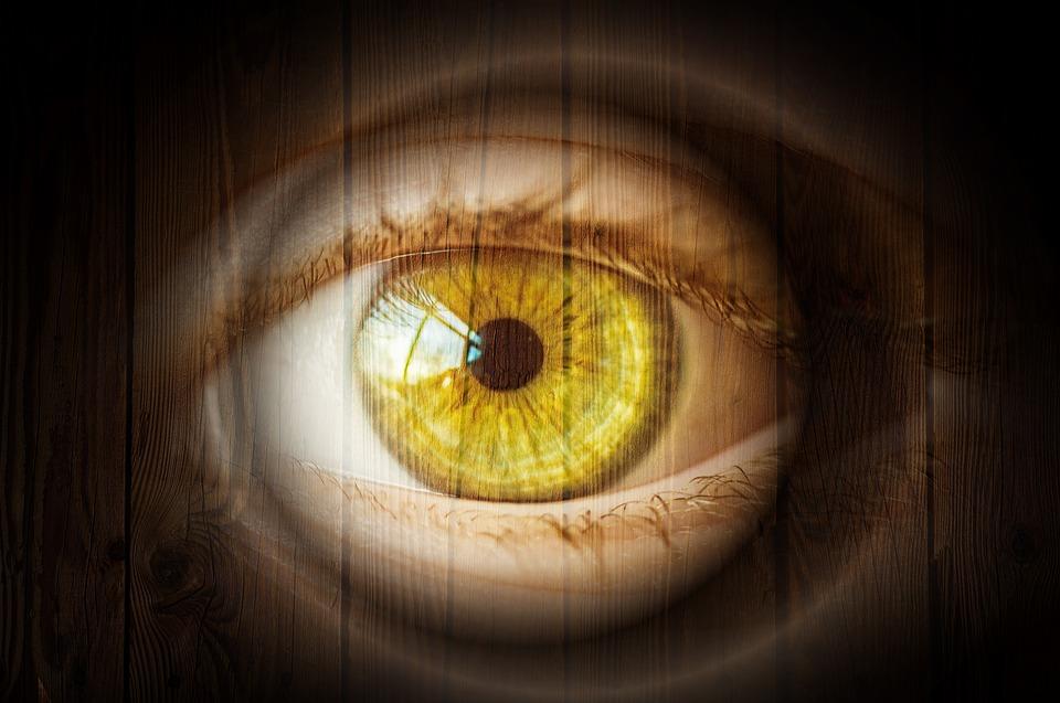 Göz, Kirpik, Ahşap Göz, Ahşap, Tahıl, Yapısı, Doku
