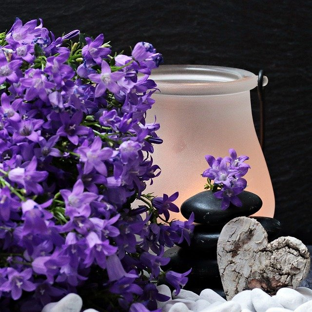 Flowers Flower Purple Stones 183 Free Photo On Pixabay