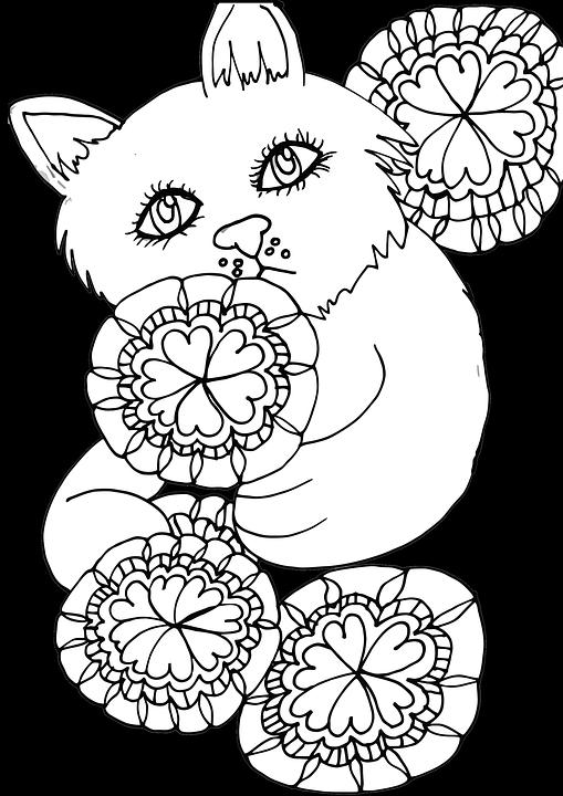 všetky čierne péro v bielej mačička