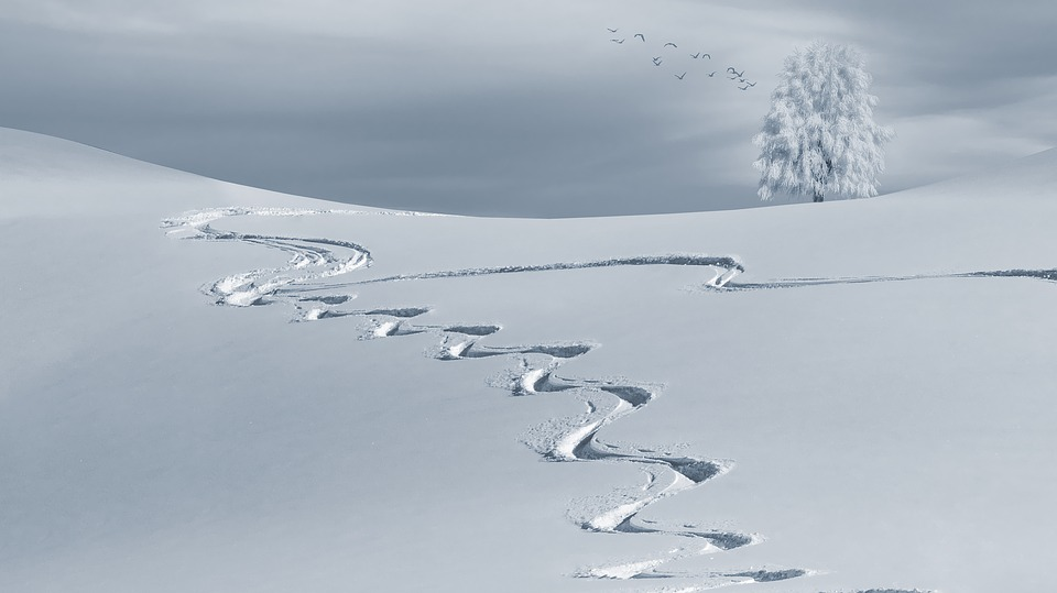 Hivernal, Backcountry Skiiing, Des Pistes De Ski