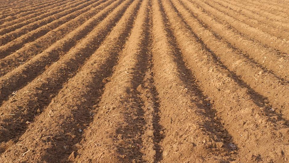 Odkiaľ pochádza pôda a z čoho sa vlastne skladá?