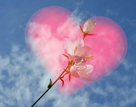 白, 赤, ピンク, ハート, 空, 青, 花, 鐘, 愛, バレンタインデー