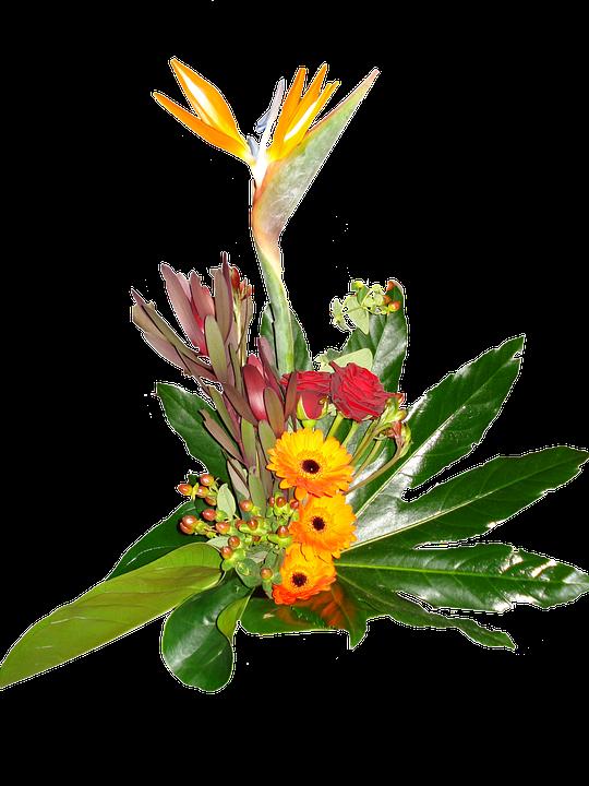 Flower Bouquet Gerbera Bird Of · Free image on Pixabay