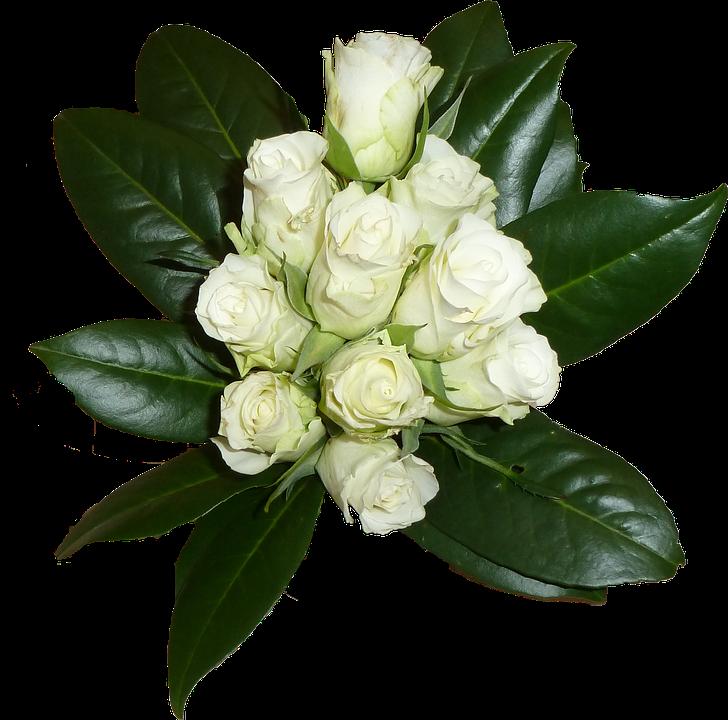 ภาพประกอบฟรี ช่อดอกไม้ สีขาว ดอกกุหลาบ แผ่น ภาพฟรี
