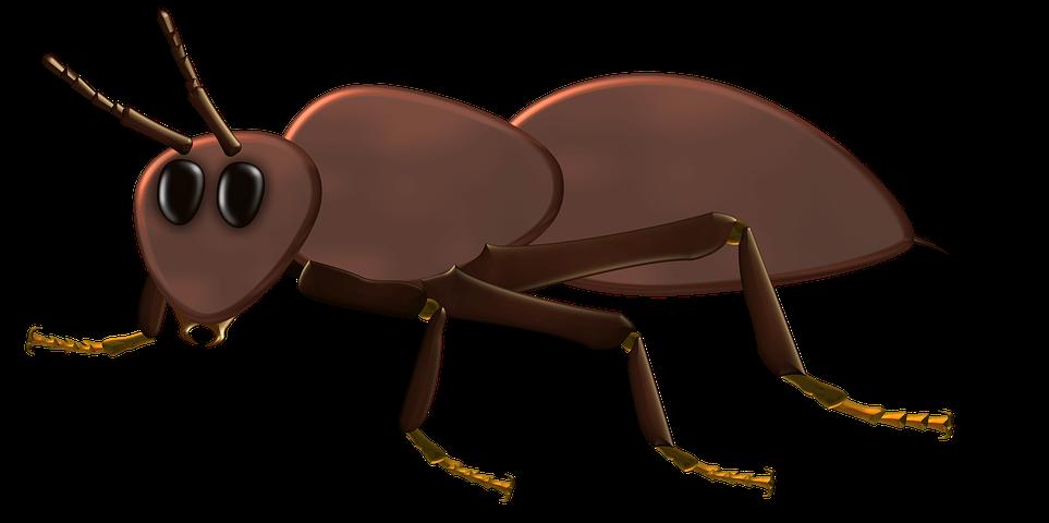 кино, шапочка муравья картинка дает больше возможностей