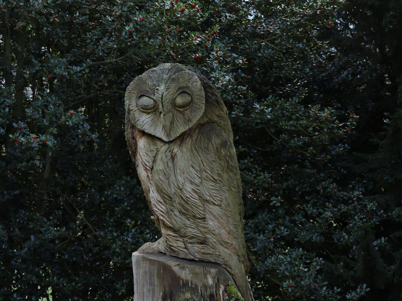 картинки сова статуя течение