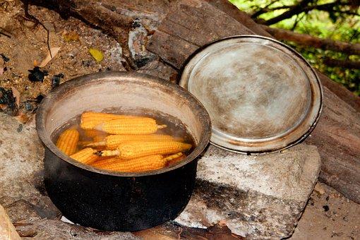 Corn On The Cob, Cooking Pot, Campfire