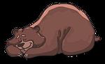 bear, lies, sleeps