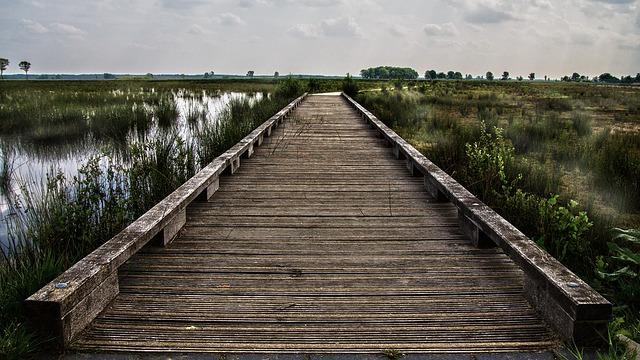 Bridge Wood Landscape 183 Free Photo On Pixabay