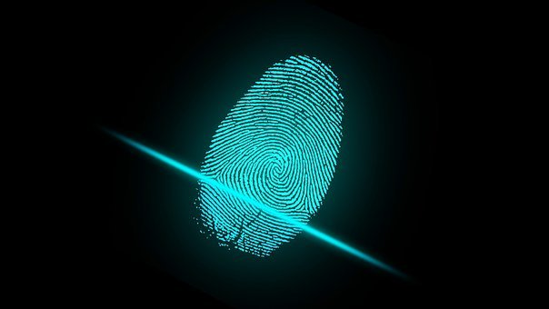 Finger Fingerprint Security Digital Identi