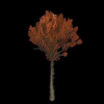 Yaprak Boyama Resimler Pixabay ücretsiz Resimleri Indir