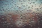 drops, water, water drop