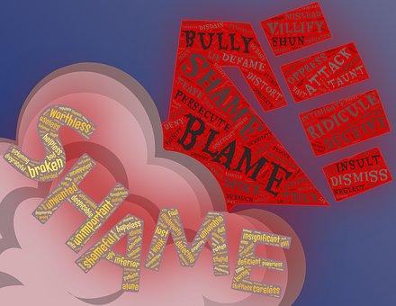 Shame, Blame, Bullying, Aggression