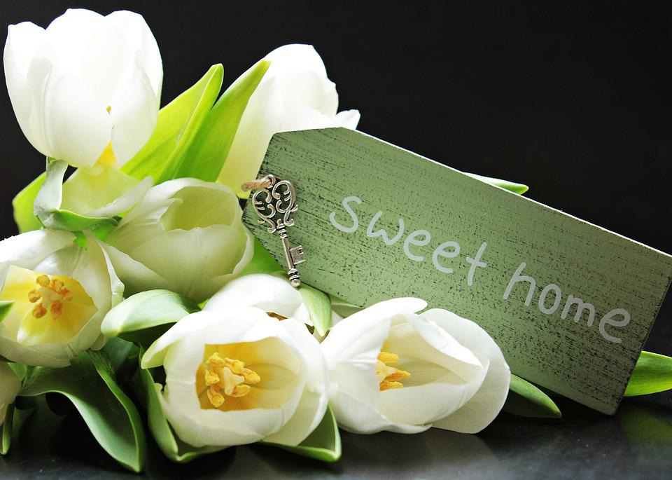 Tulipes, Tulipa, Bouclier, Sweet Home, Clé, Trousseau