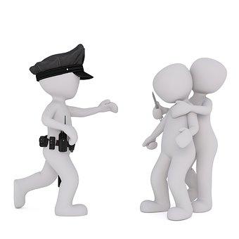 Policía, La Delincuencia, Penal