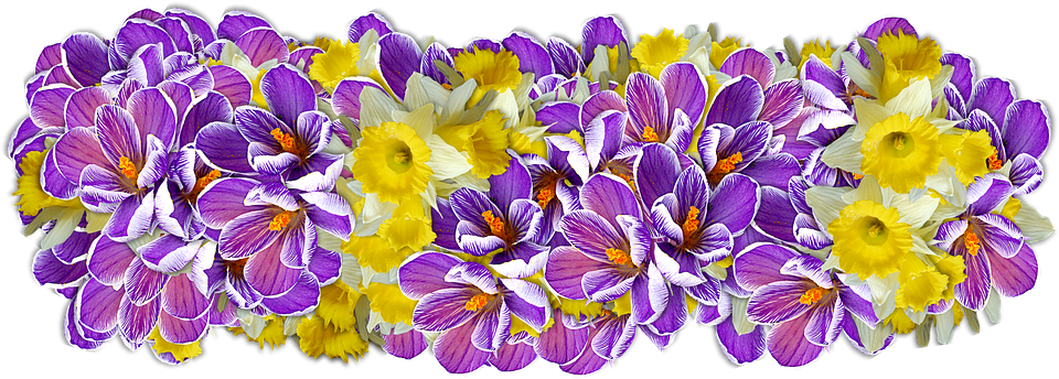 Png Images Pixabay Download Free Pictures