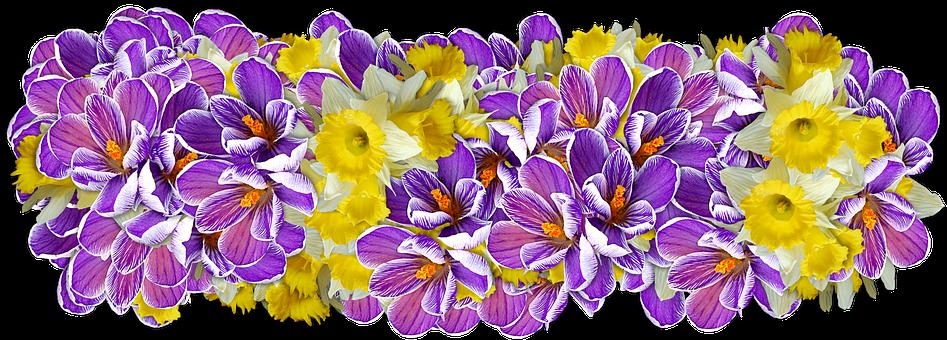 Kwiaty, Dekoracja, Linia Kwiatów
