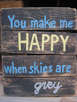 Quote You Make Me Happy Skies Are Grey Pal