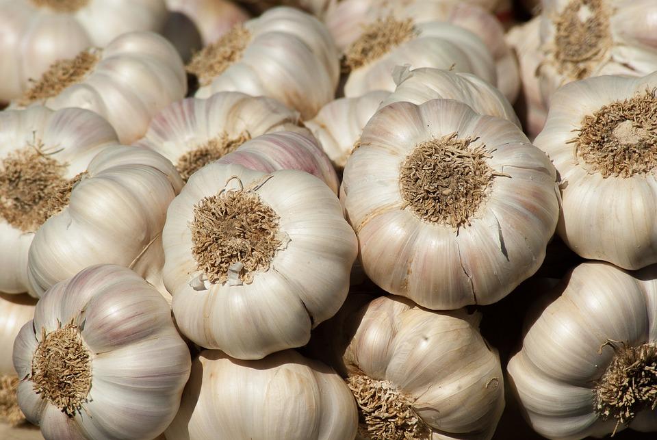 Garlic, Vegetable Garden, Garden, Harvest, Market