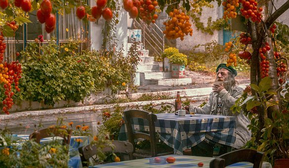 Autumn, Old Man, Memories, Tomatoes
