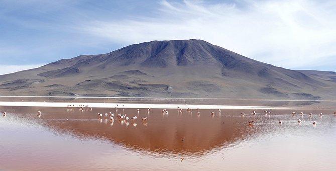 Laguna, Colorada, Bolivia, Bolivia