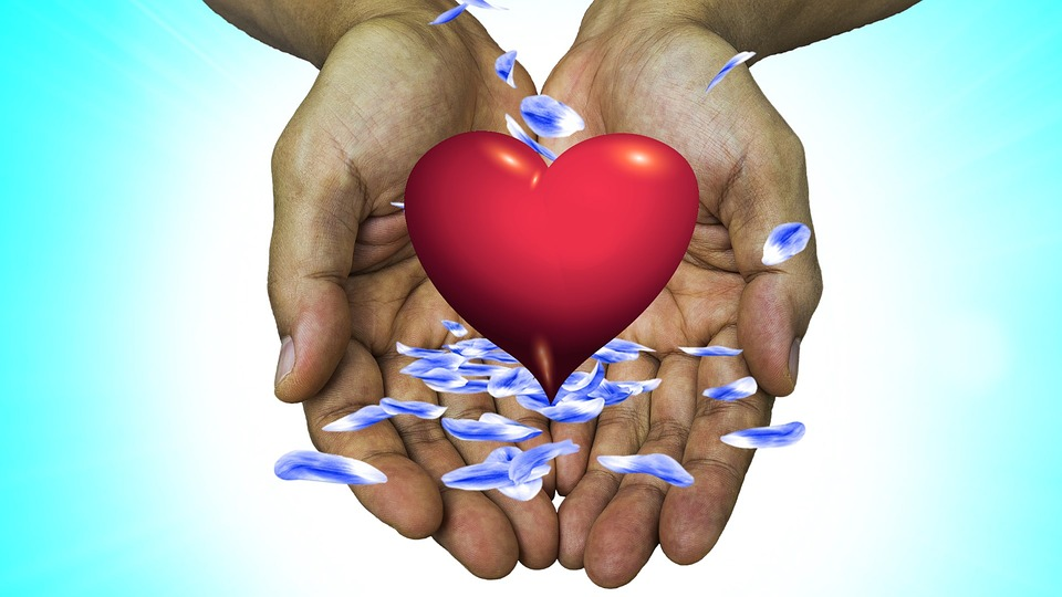 Heart, Hand, St Valentin, In Love, Love, Joy, Affection