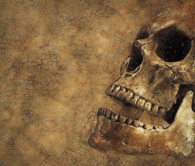 Skull Background Texture Free Image On Pixabay